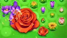 blooming flowers in Blossom Blast Saga