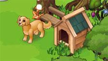 Oasis: a dog house