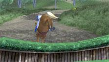 Planet Horse: cross country training