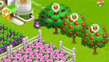 flowers and fruit trees in Family Barn