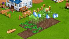 Farm Days: watering seeds