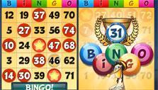 Bingo Drive: Bingo!