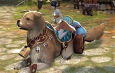 Most Awesome Mount in Echo of Soul - Survey Option 2