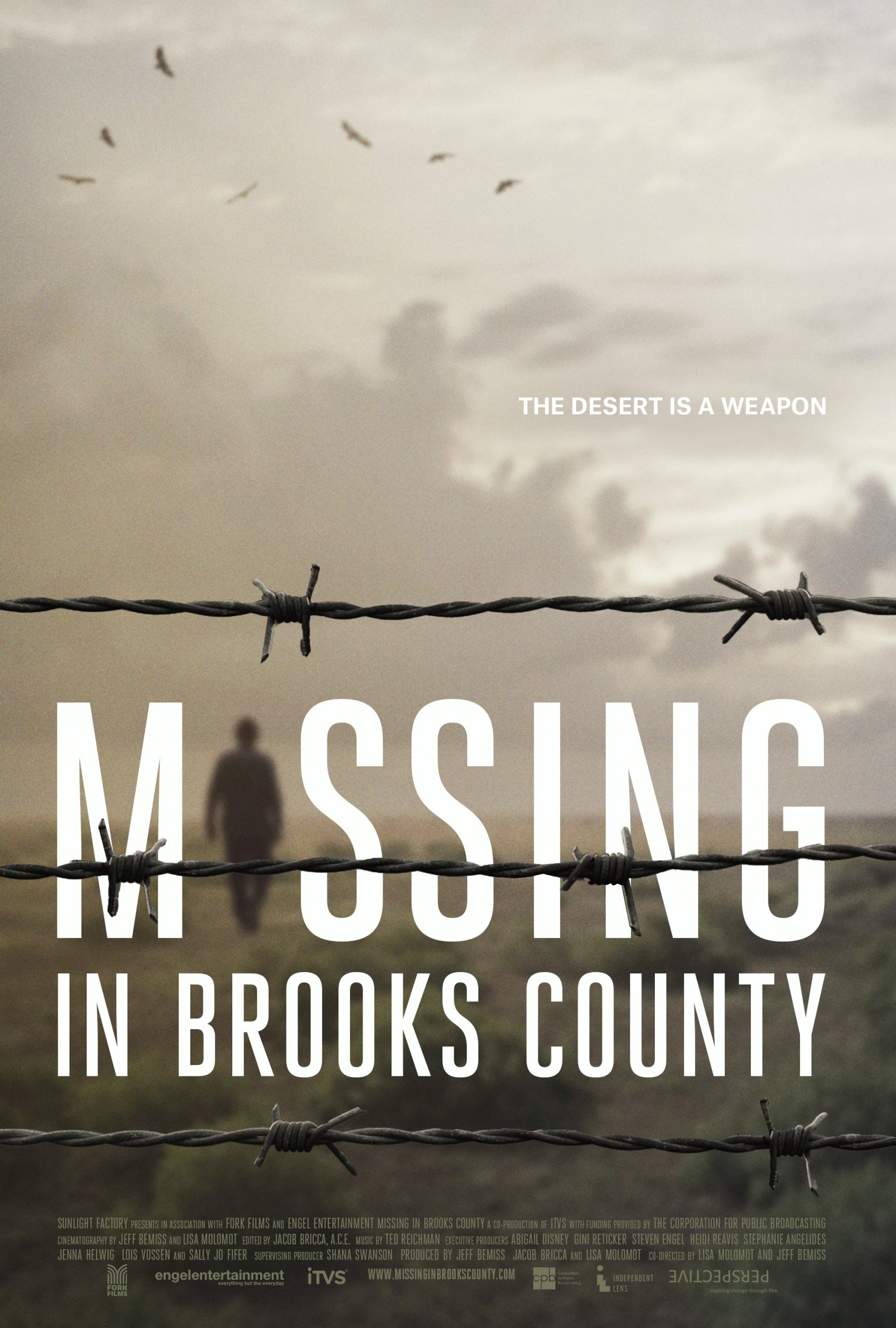 Poster for Missing in Brooks County