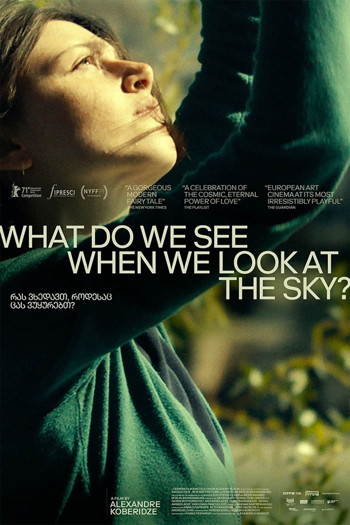 Poster for What Do We See When We Look at the Sky?