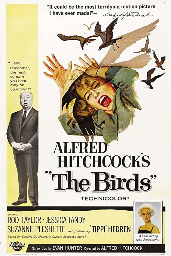 Poster for The Birds (1963) (35mm)