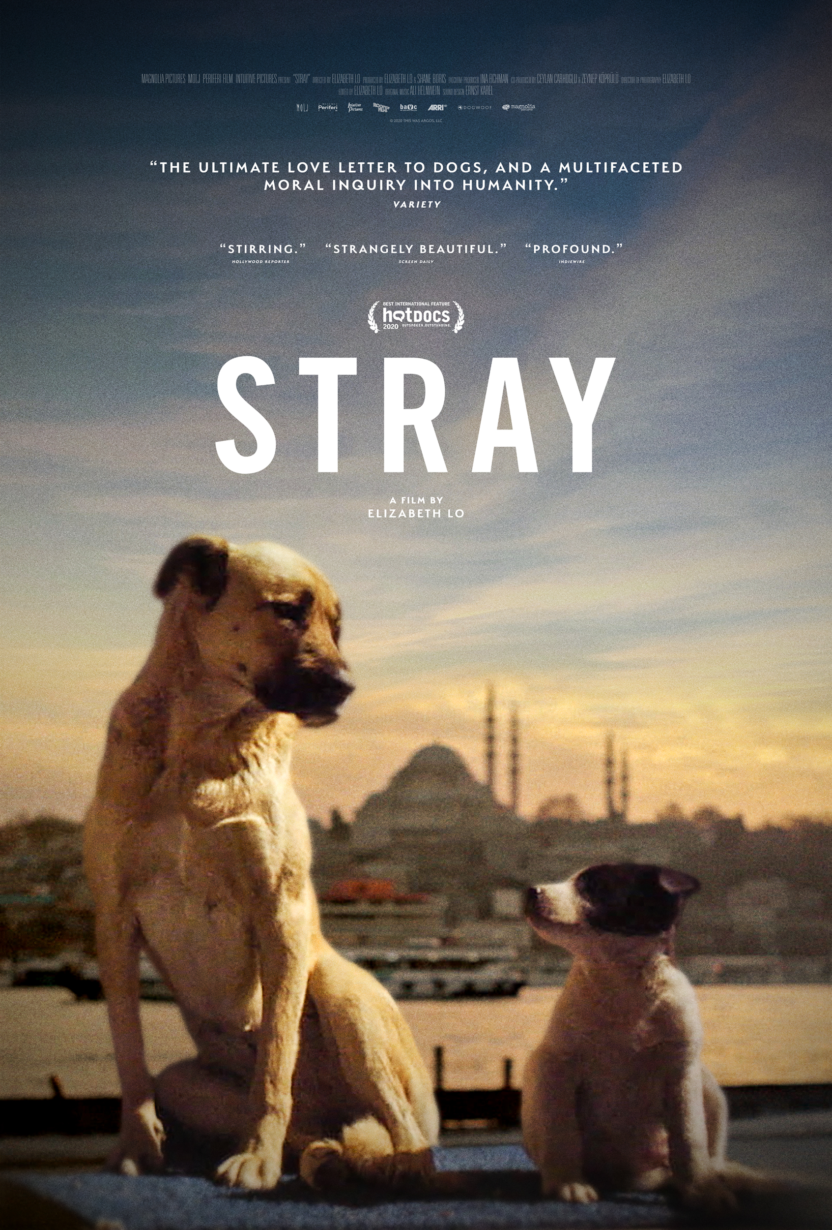 Poster for Stray (2020)