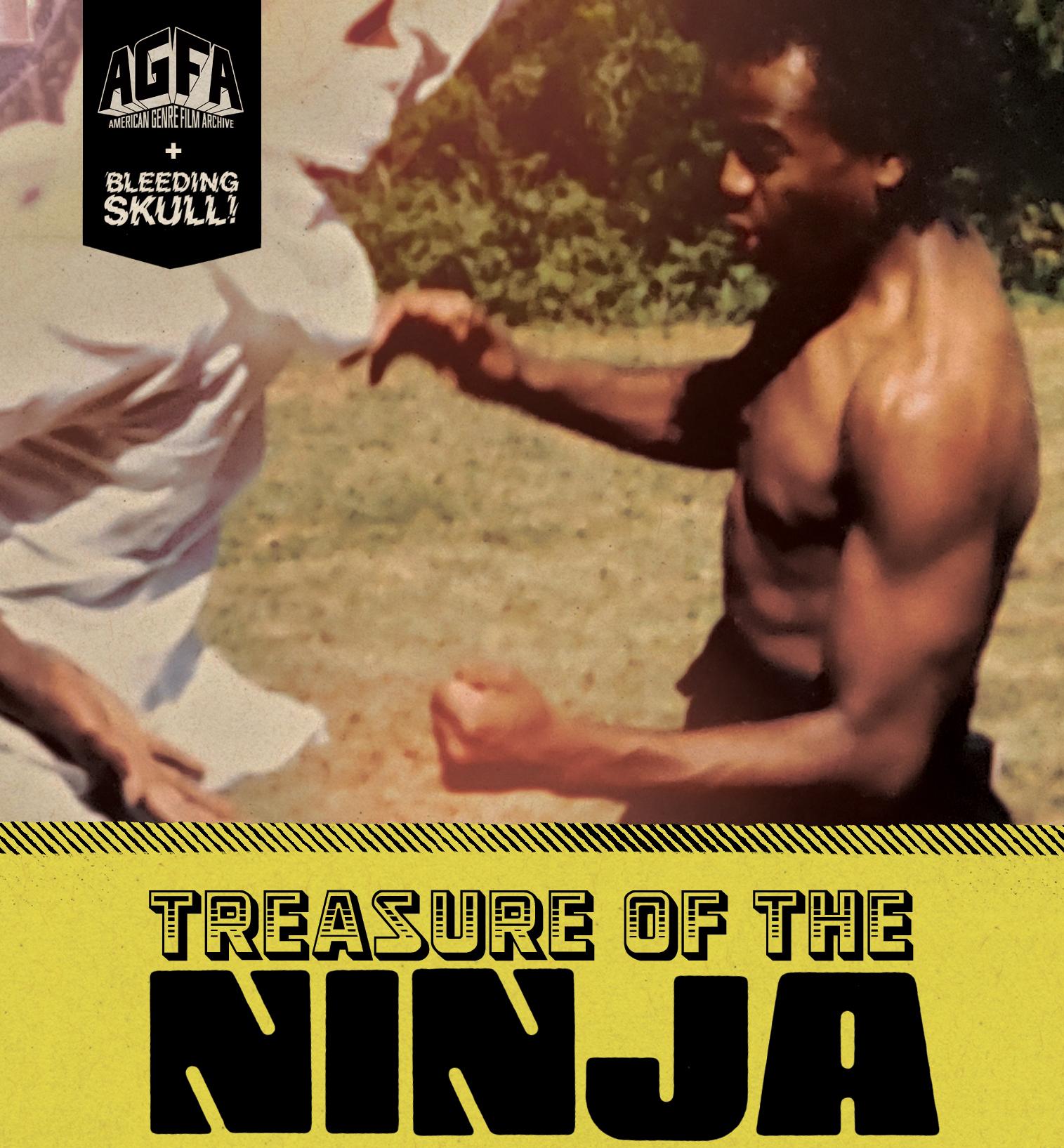 Poster for TREASURE OF THE NINJA