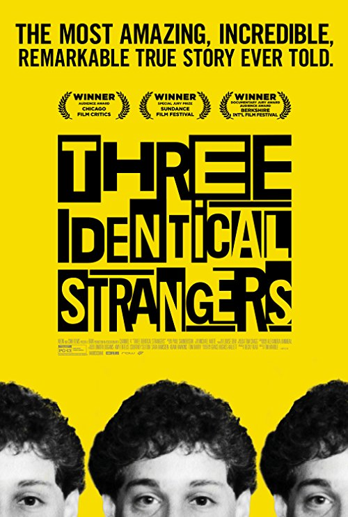 Poster for Three Identical Strangers