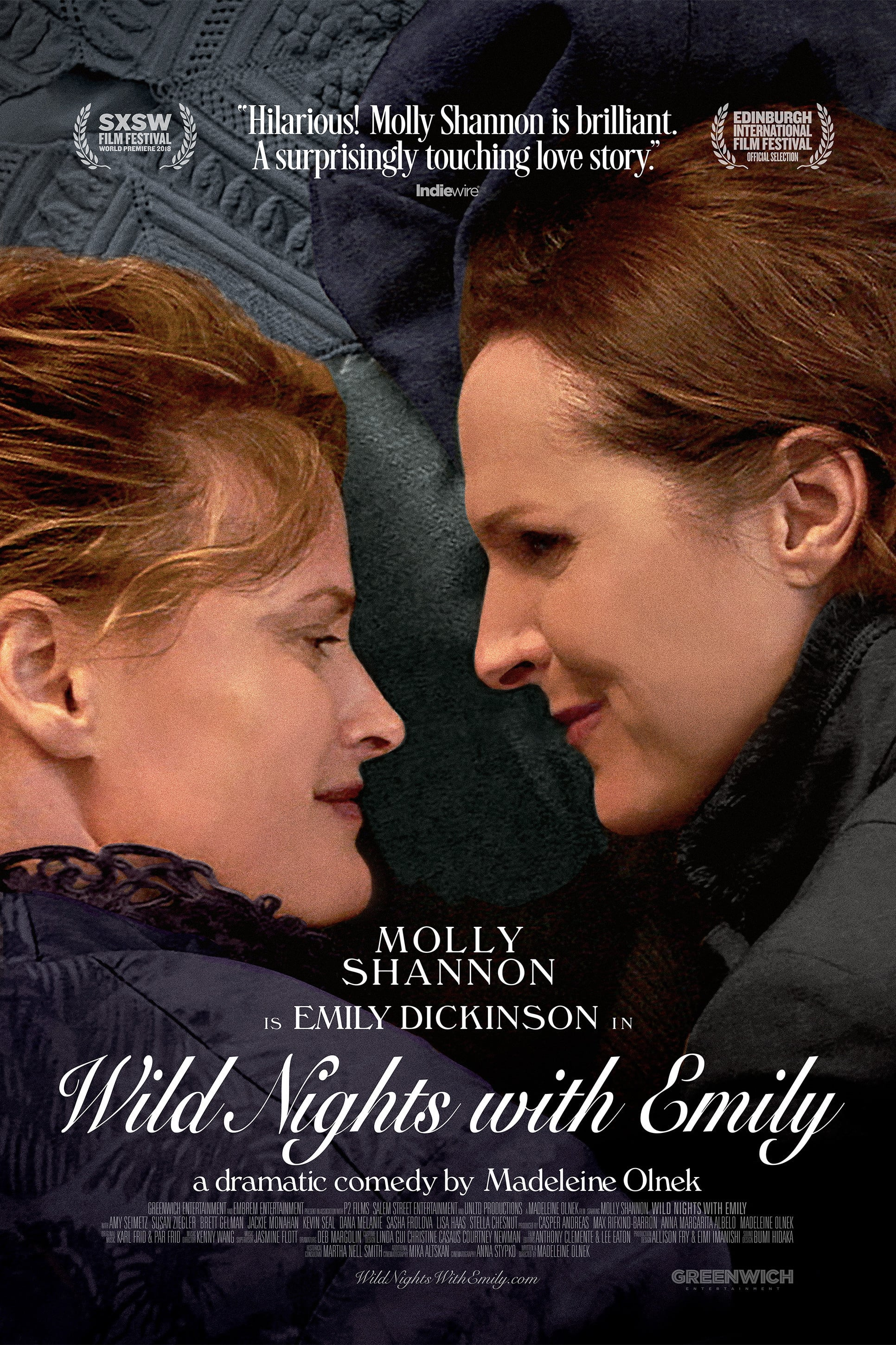 Poster for Wild Nights With Emily