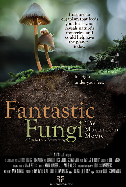 Poster for Fantastic Fungi – Virtual Screening