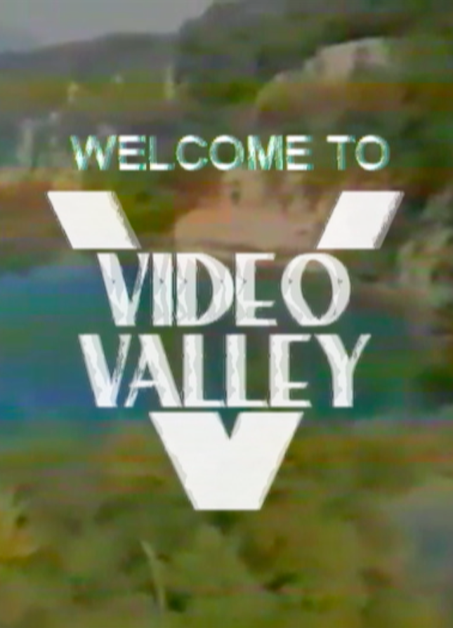 Poster for Video Valley