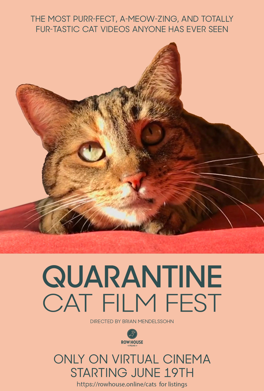 Poster for Quarantine Cat Film Festival