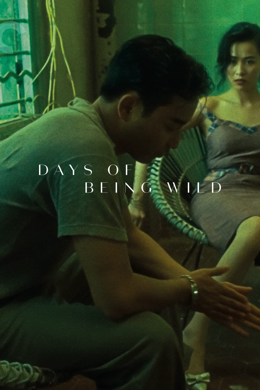 Poster for Days of Being Wild