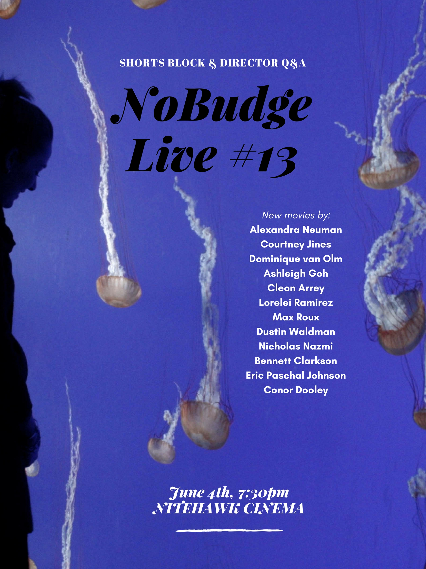 Poster for NoBudge Live #13
