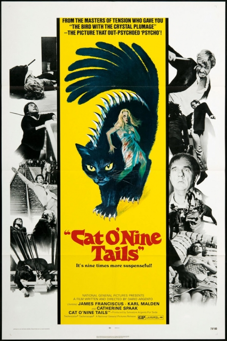 Poster for The Cat o' Nine Tails