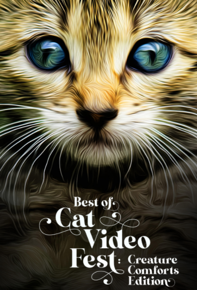 Poster for BEST OF CATVIDEOFEST: CREATURE COMFORTS EDITION!
