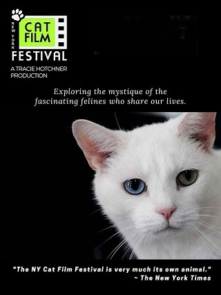 Poster for NY Cat Film Festival