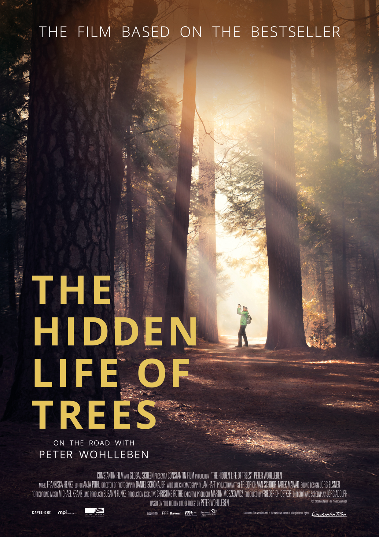 Poster for The Hidden Life of Trees