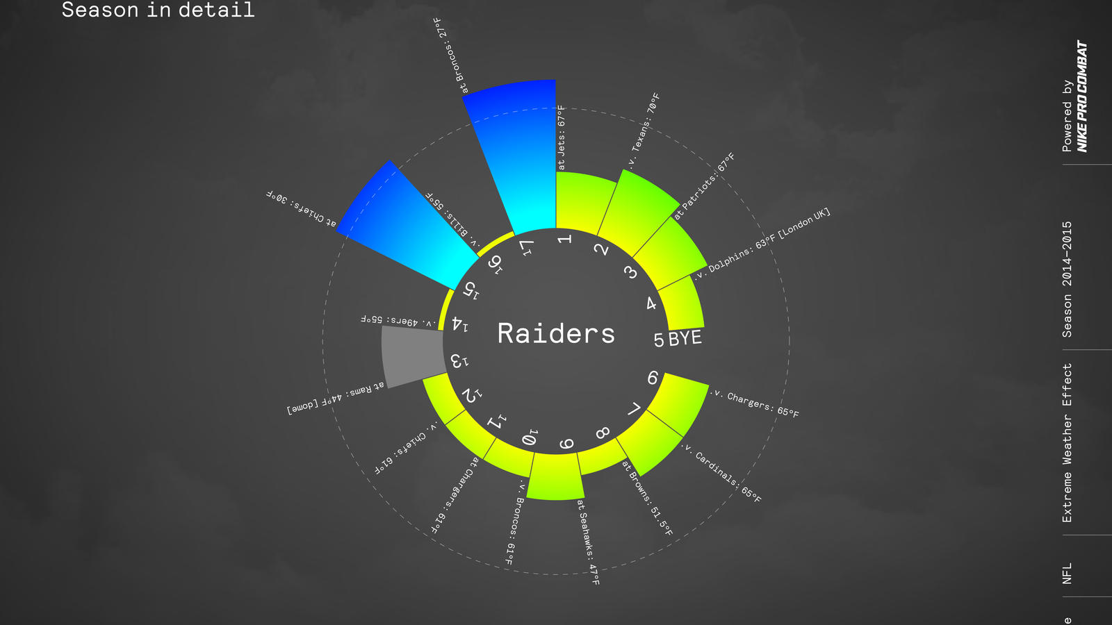 Nike Nfl Pro Combat Weather Sos Raiders