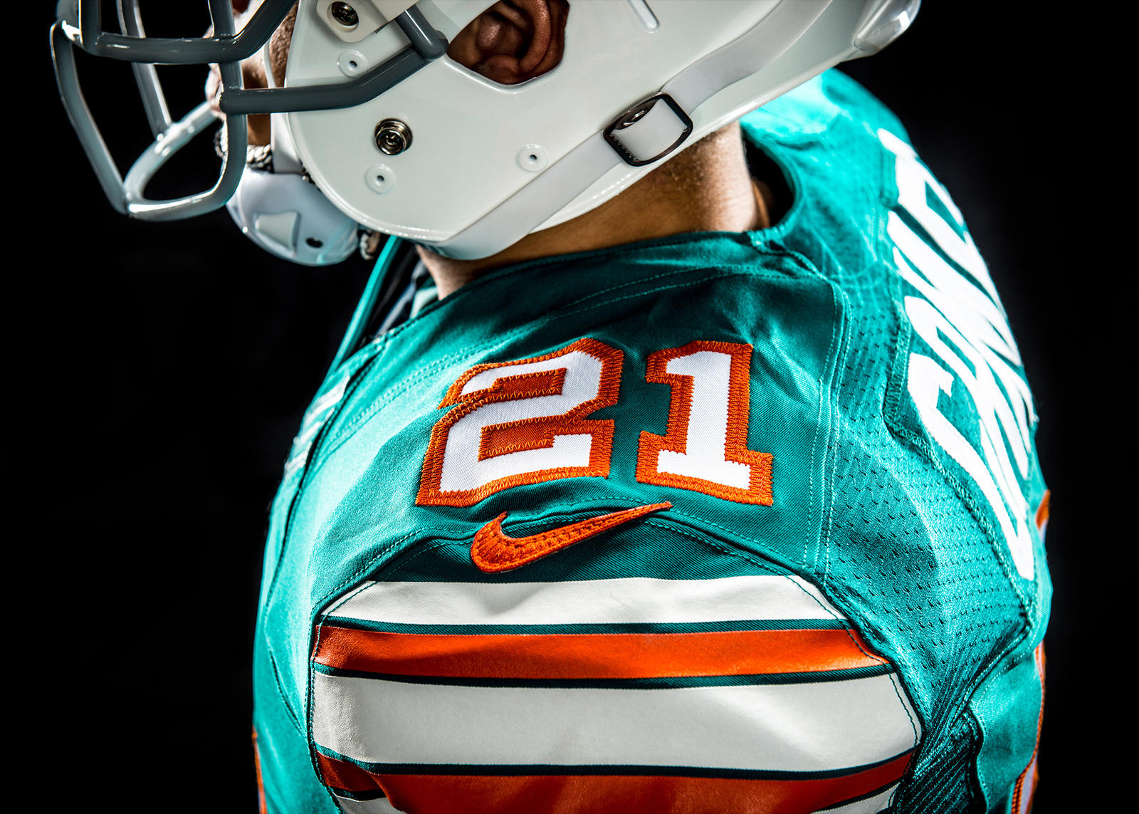 Dolphins-12