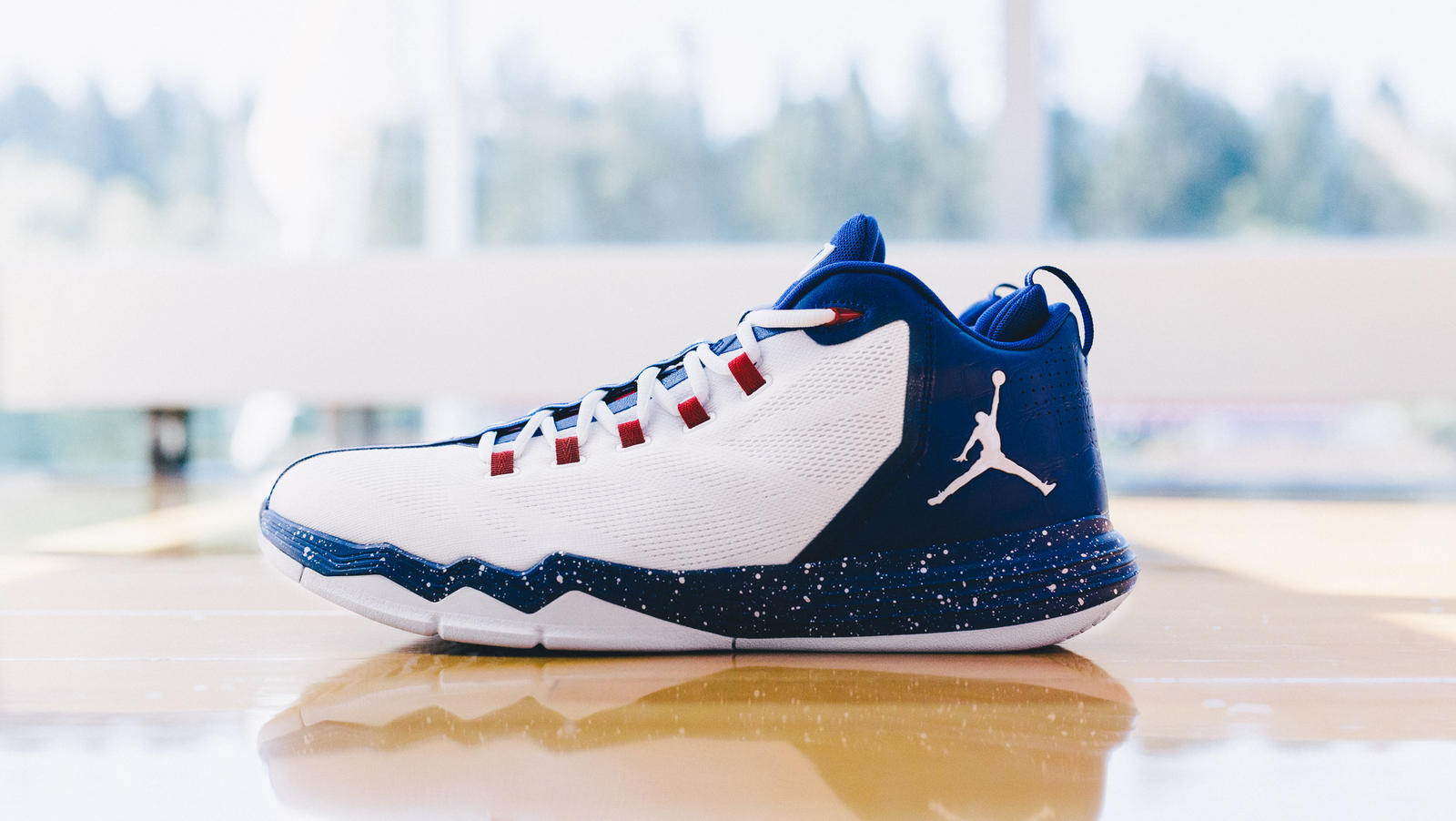 Jordan cp3 xixi ae pe white blue native 1600