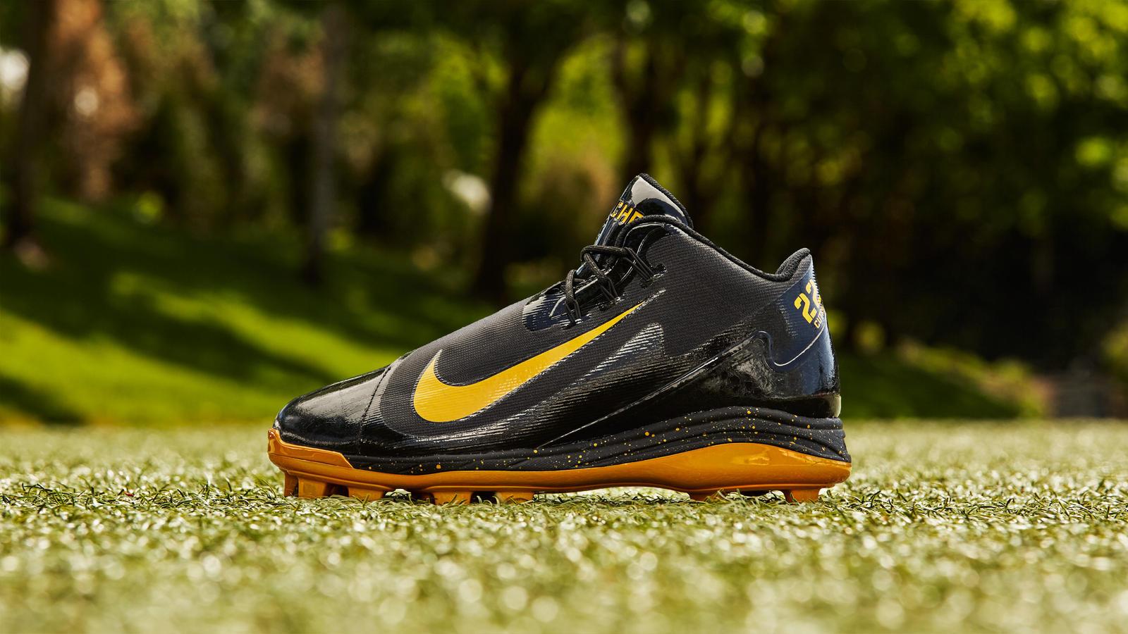 Nike Air Swingman Legend PE