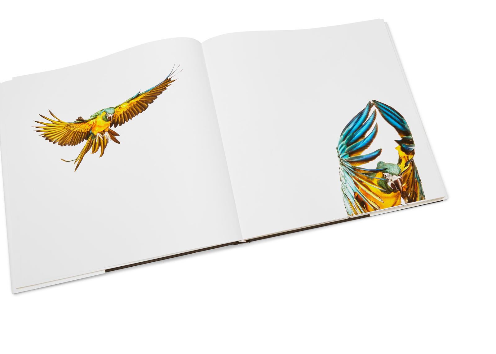 SU16_OLYMPIC_BOOKS_0100_AW1