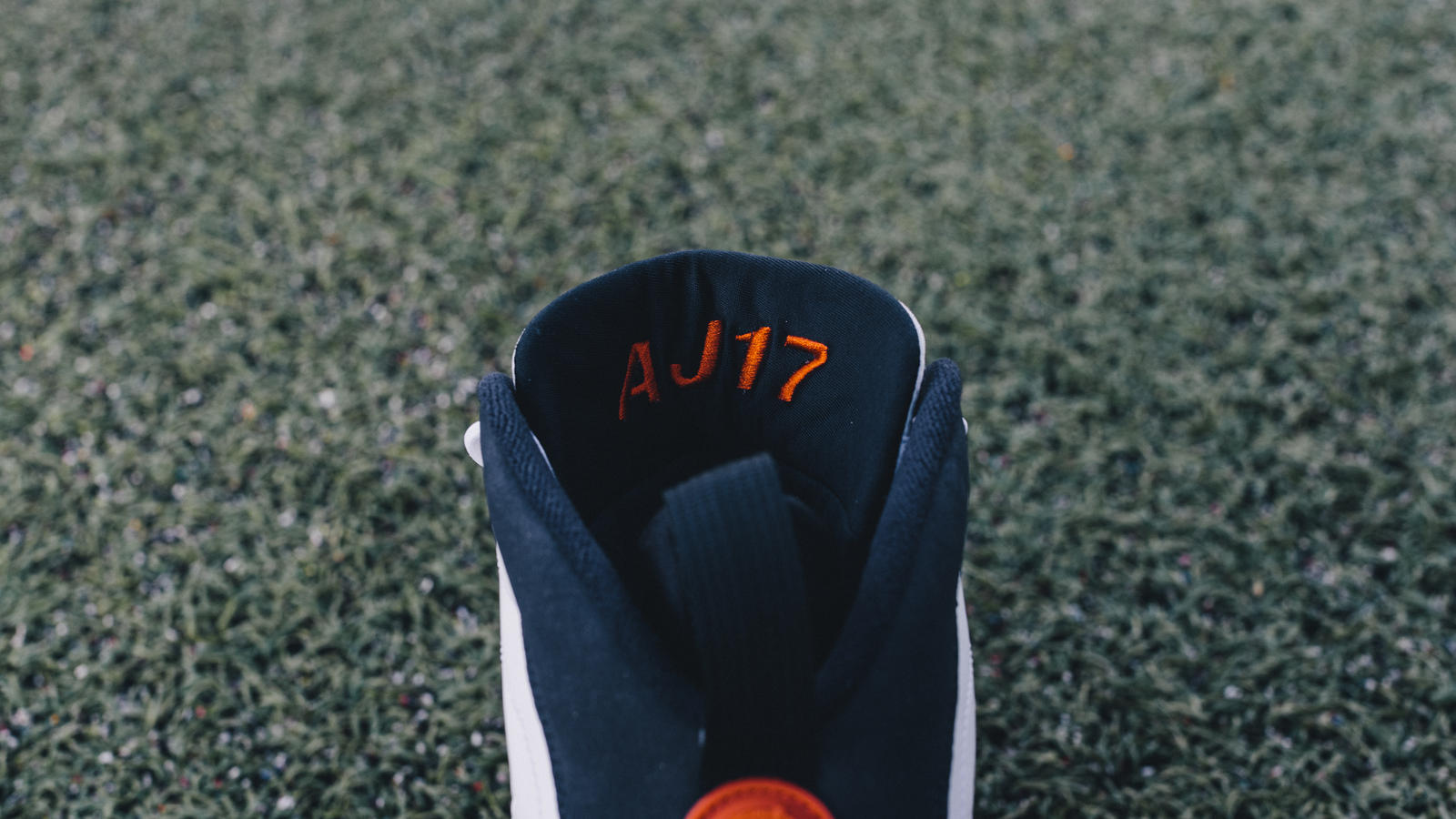 Alshon Jeffrey Air Jordan IX PE Cleat