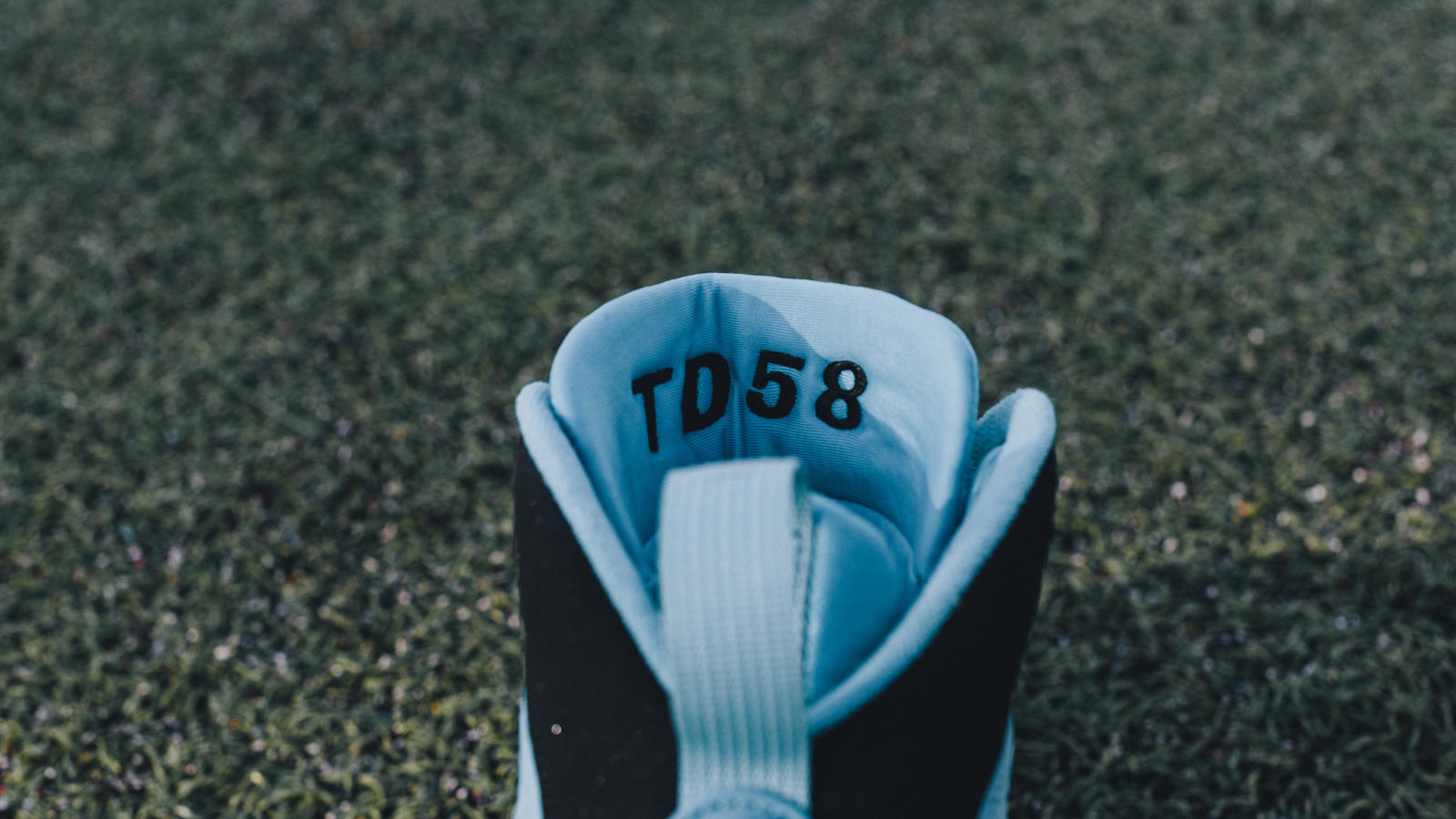 Thomas Davis Air Jordan IX PE Cleats