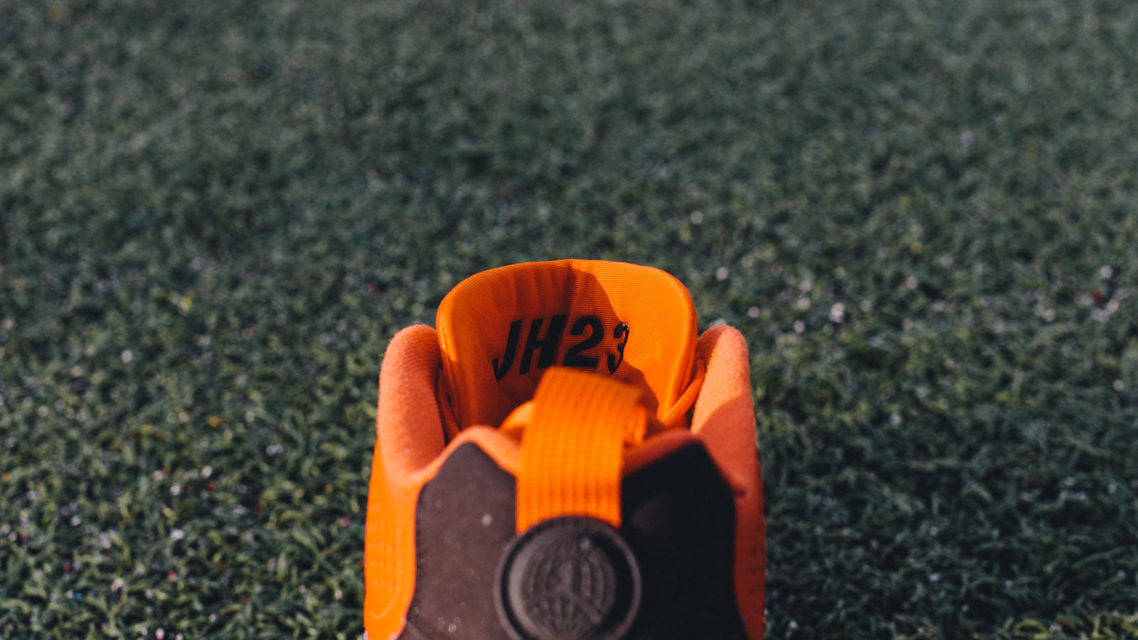 Joe Haden Air Jordan IX PE Cleat