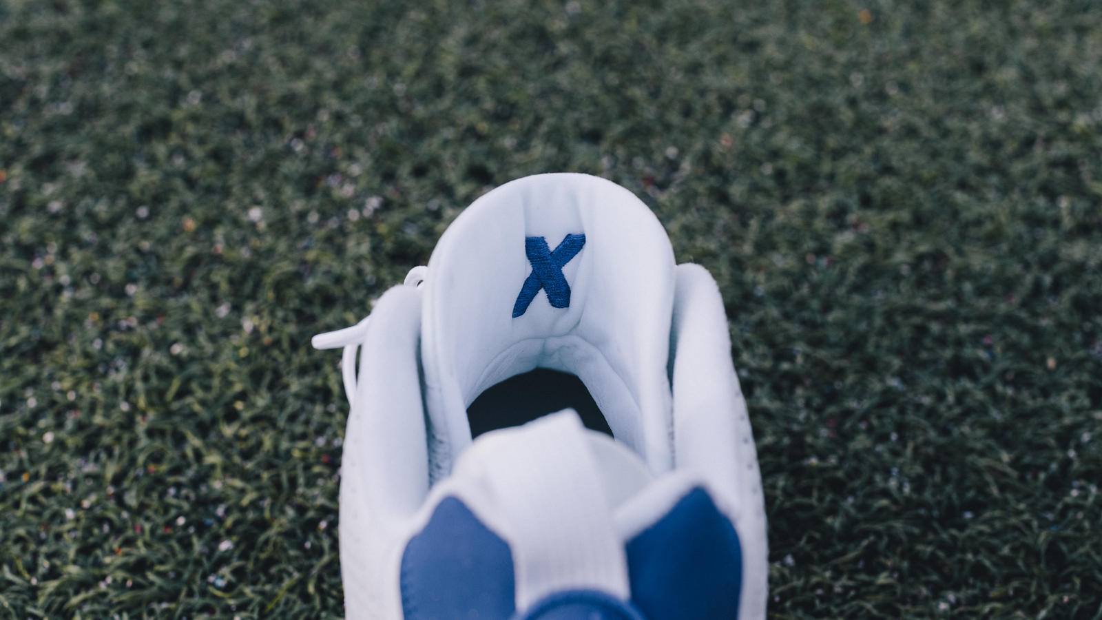 Dez Bryant Air Jordan IX PE Cleat