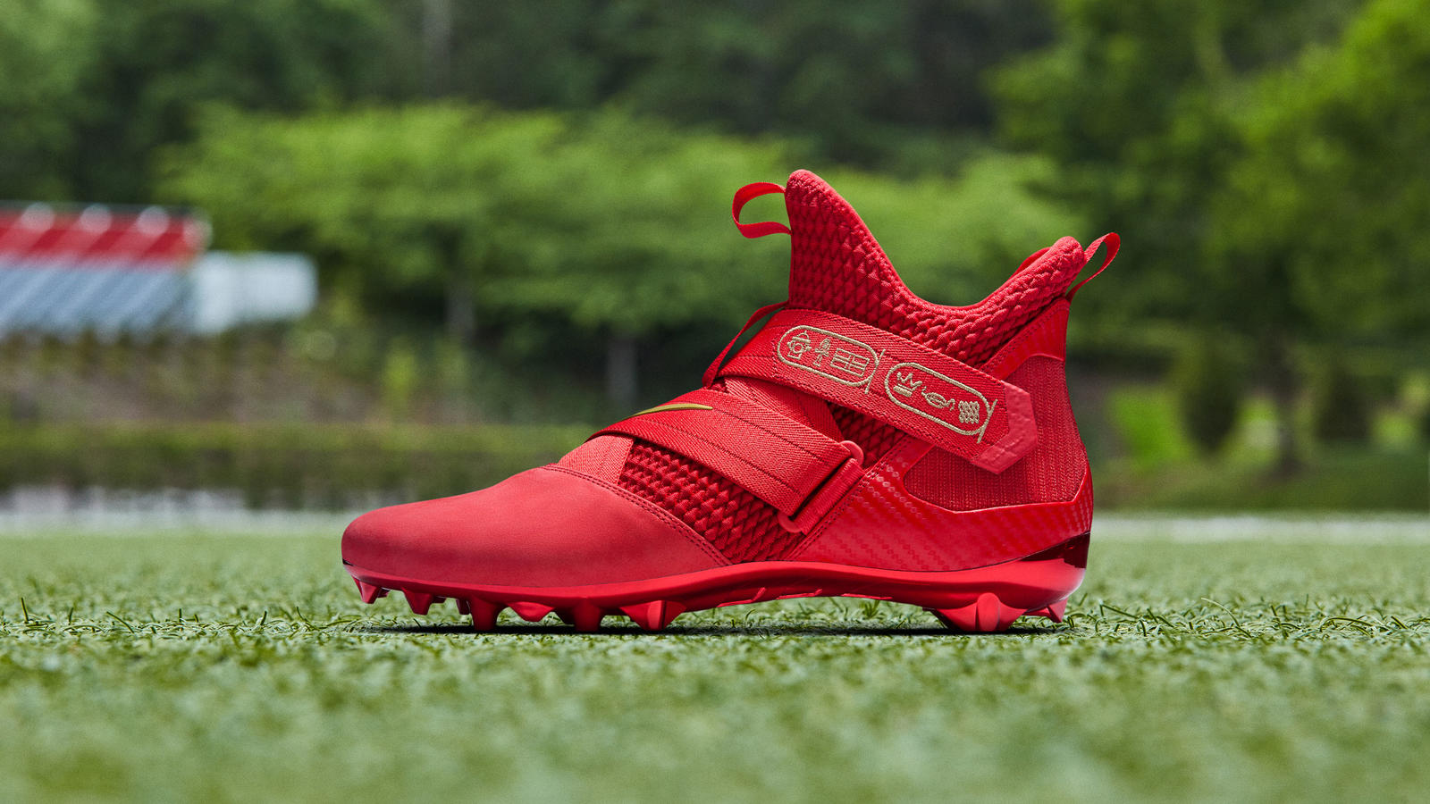 Nike LEBRON Soldier 12 Cleat (Odell
