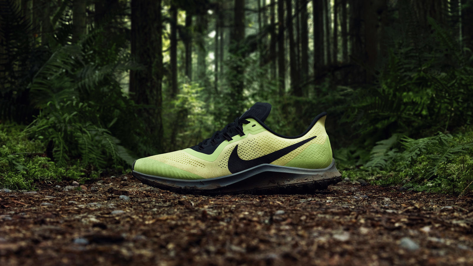 Air Zoom Pegasus 36 Trail  1