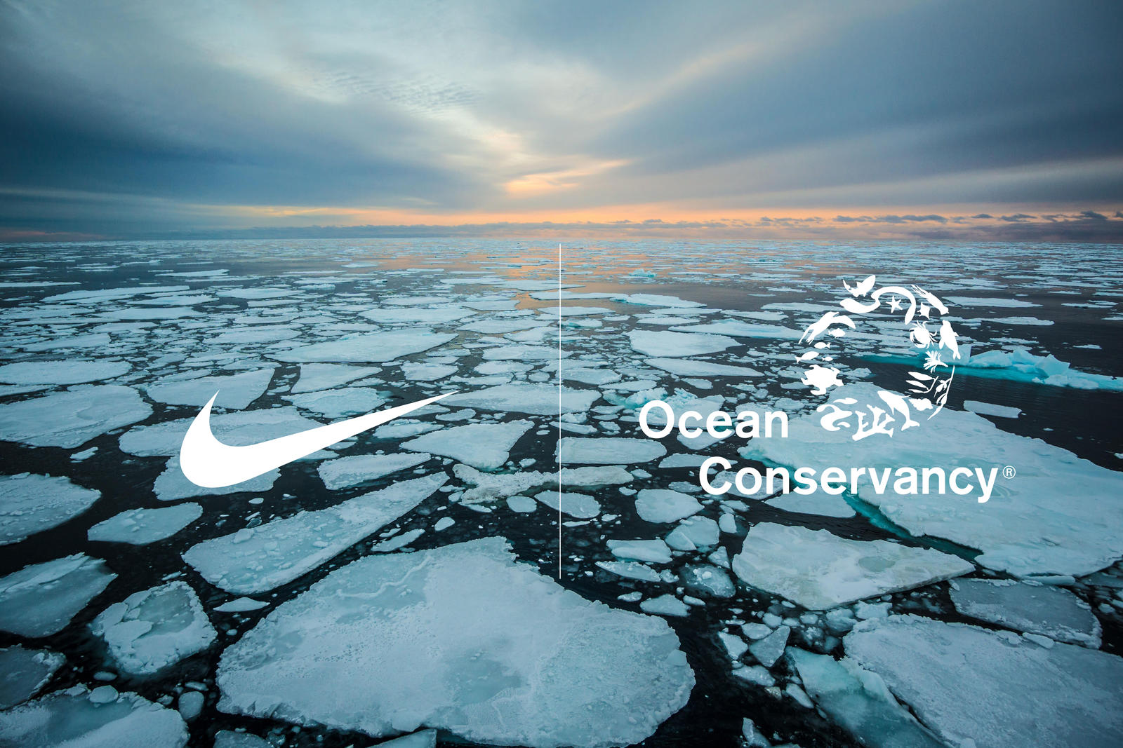 Nike Ocean Conservancy Arctic Pledge 0