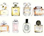 perfumes-famosos