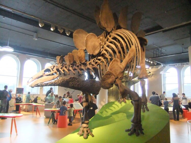 museu-da-escocia-edimburgo