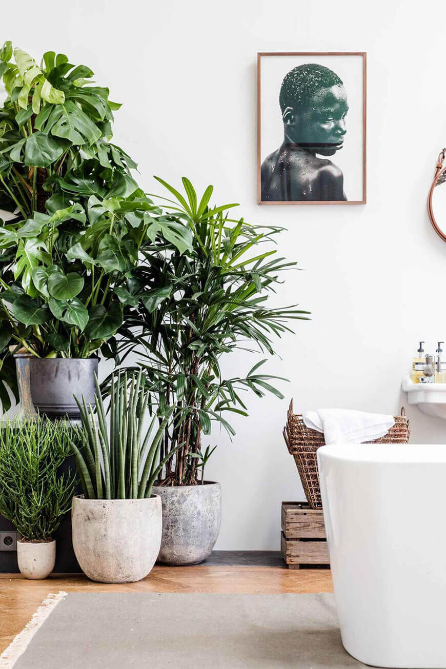 decoracao-plantas-ambientes-internos-studio-lab-decor-3