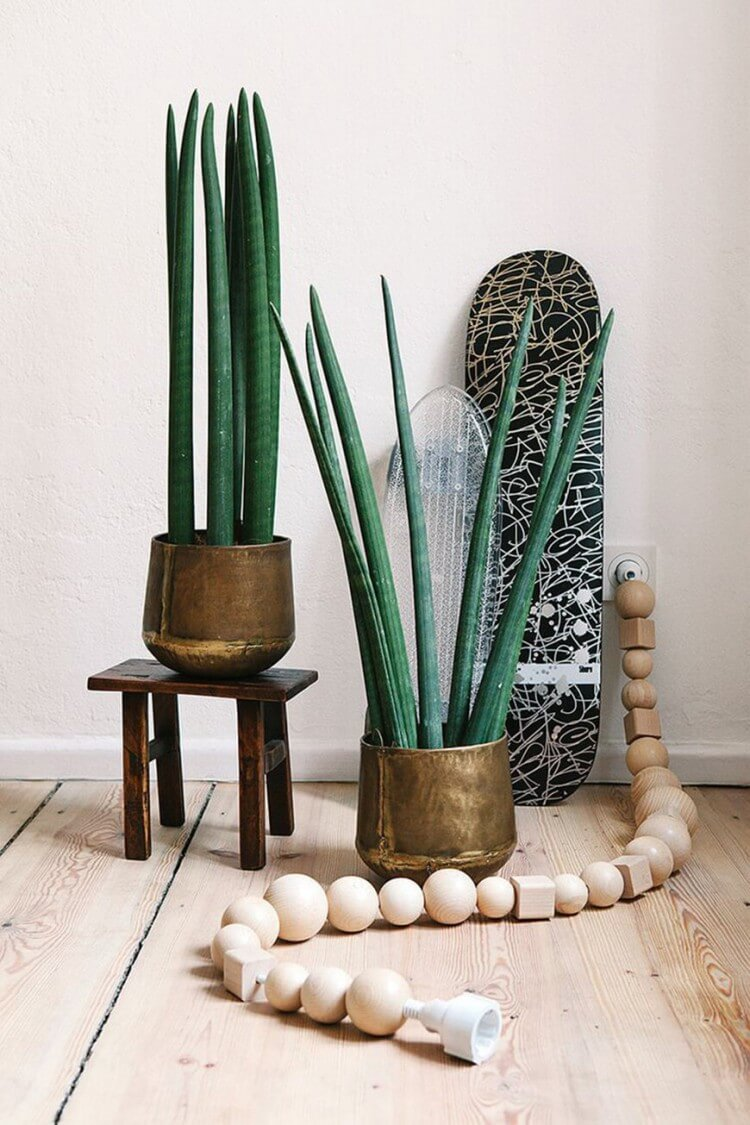 decoracao-plantas-ambientes-internos-studio-lab-decor-16