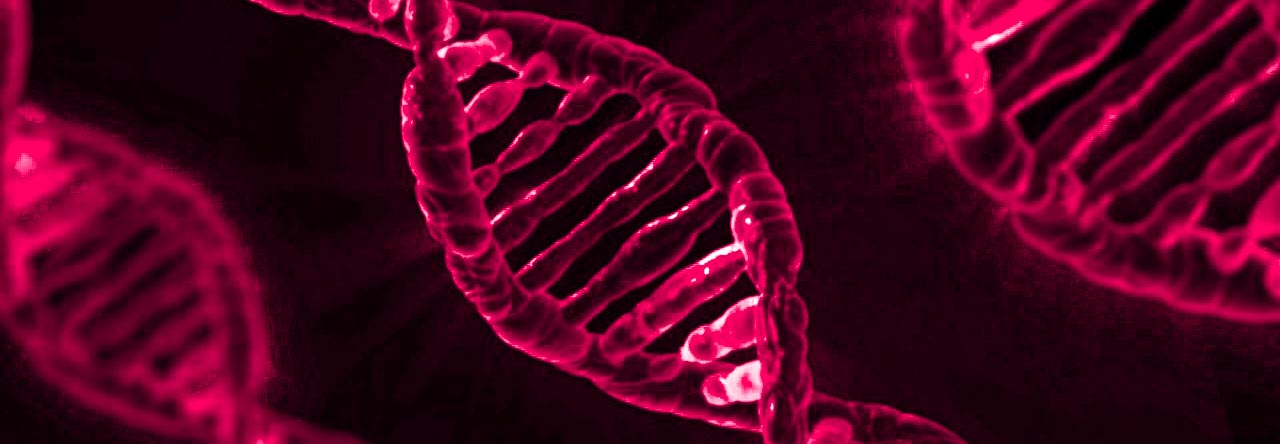 Researchers Show How Specific Gene >> Recent Research Shows Hair Loss And Baldness Are Because Of Aging Dna