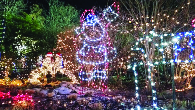 Turtle Back Zoo Christmas Lights 2019.Turtle Back Zoo Christmas Lights 2019 Christmas 2019