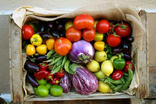 Jersey Fresh: Join a Community Supported Agriculture (CSA) Program in NJ