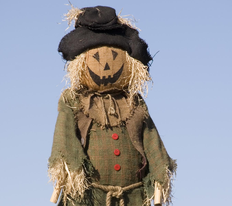 5 No-Cost Halloween Decorations