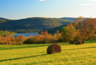 Awesome Things to Do In Upstate New York