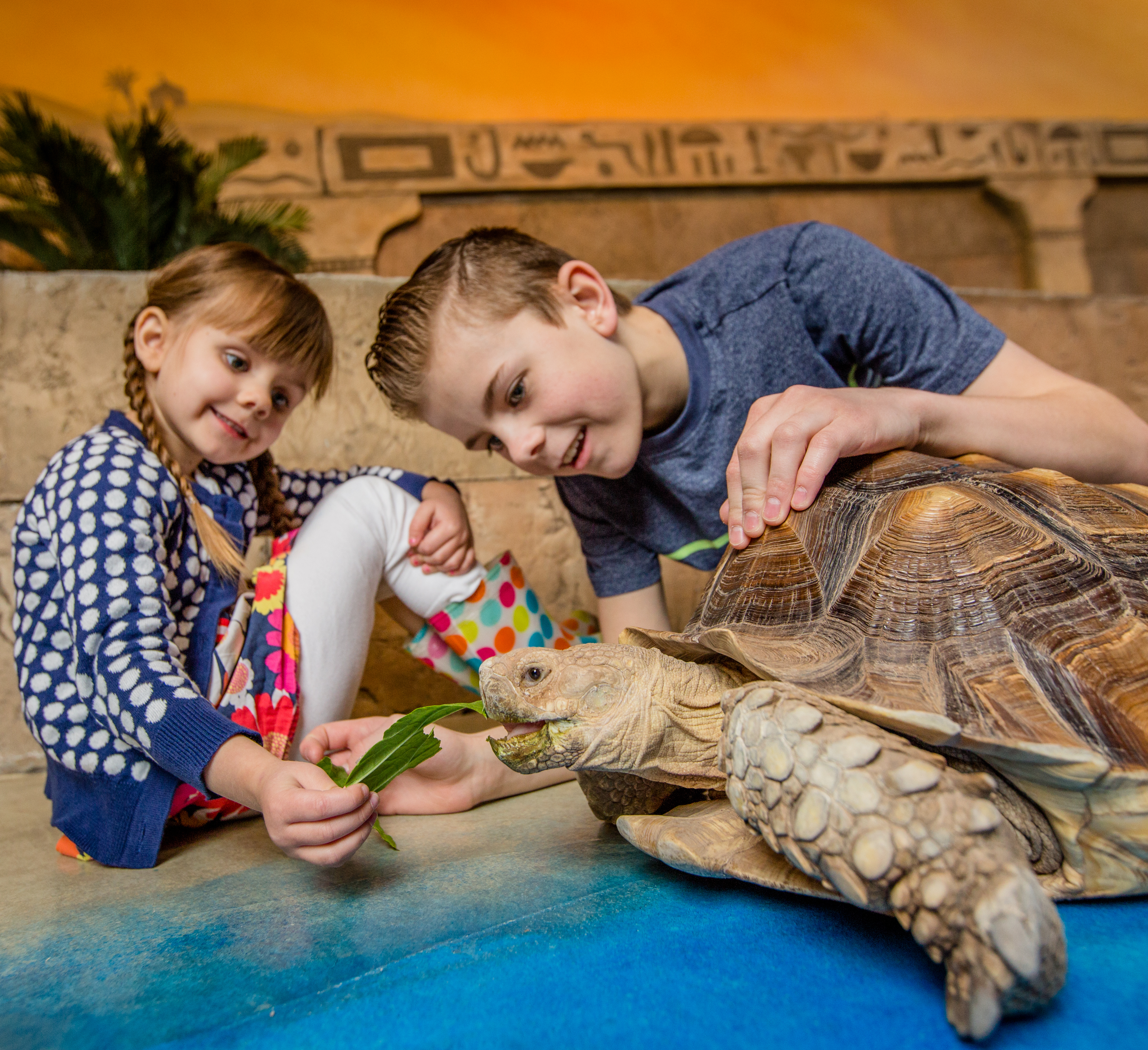 New Jersey is Getting a New Aquarium - NJ Family