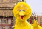 A Sesame Street and CNN Town Hall for Children Will Address Racism