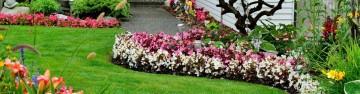 Spring Lawn & Garden Care
