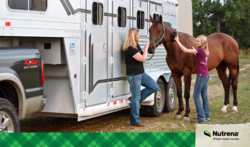 Managing Feeding Programs on the Road for Show Horses