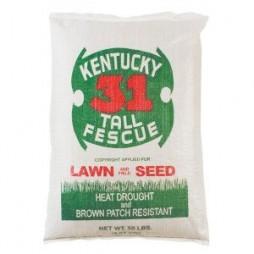 SOUTHERN STATES KENTUCKY 31 TALL FESCUE 50 LB