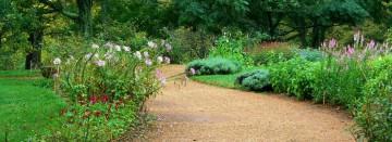 Lawn & Garden